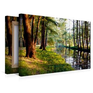 Premium Textil-Leinwand 45 cm x 30 cm quer Fließ im Spreewald