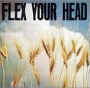 Flex Your Head-A DC Sampler