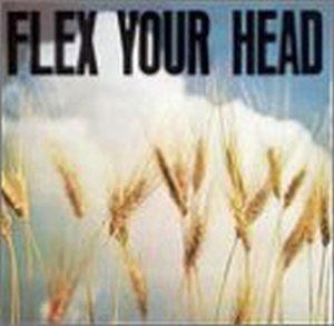 Flex Your Head-A DC Sampler