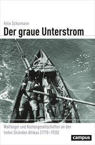 Der graue Unterstrom