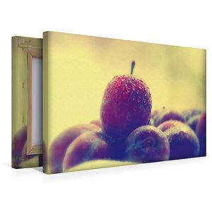 Premium Textil-Leinwand 45 cm x 30 cm quer Frisches Obst Stillle