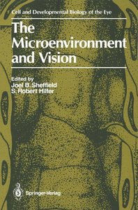 The Microenvironment and Vision