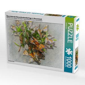 CALVENDO Puzzle Überwinternde Monarchschmetterlinge in Neuseelan
