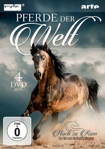 Pferde der Welt