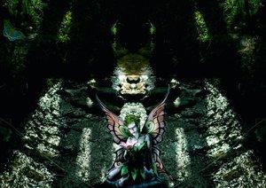 Engel und Elfen begleiten Dich (Posterbuch DIN A3 quer)