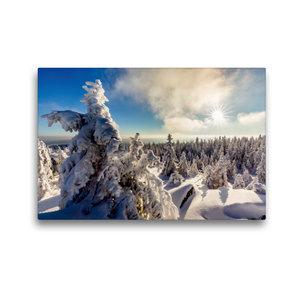 Premium Textil-Leinwand 45 cm x 30 cm quer Eisige Baumskulpturen