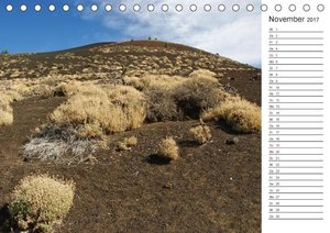 Vulkanwandern auf Teneriffa