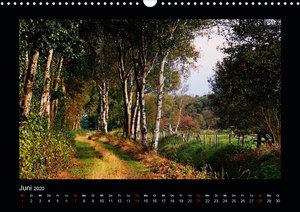 Landschaft Teufelsmoor / 2020