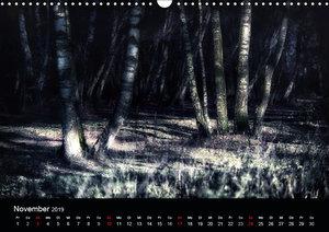 Mystische Wälder (Wandkalender 2019 DIN A3 quer)