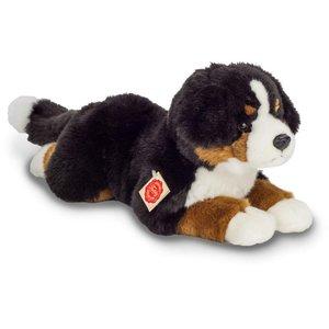 Berner Sennehund liegend, ca. 40cm