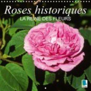 Roses historiques - la Reine des fleurs (Calendrier mural 2015 3