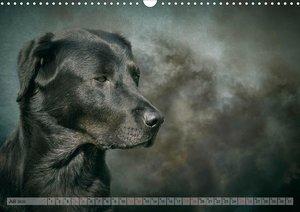 Jagdhunde im Portrait (Wandkalender 2020 DIN A3 quer)