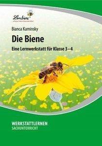 Die Biene (CD-ROM)