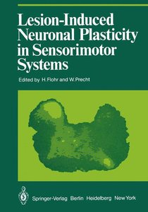Lesion-Induced Neuronal Plasticity in Sensorimotor Systems