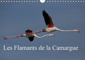 Les Flamants de la Camargue (Calendrier mural 2015 DIN A4 horizo