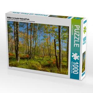 CALVENDO Puzzle Wälder im Acadia National Park 1000 Teile Lege-G