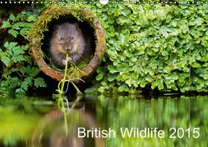 British Wildlife 2015 (Wall Calendar 2015 DIN A3 Landscape)