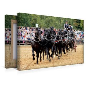 Premium Textil-Leinwand 45 cm x 30 cm quer Kraftvoll und edel: S