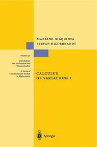 Calculus of Variations I. The Langrangian Formalism