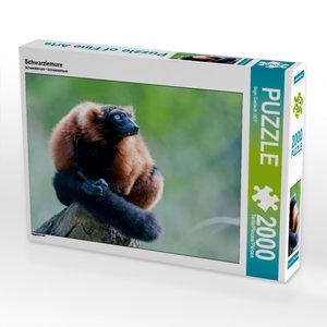 Schwarzlemure 2000 Teile Puzzle quer