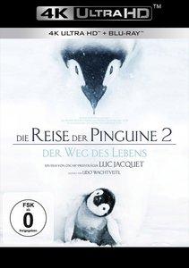 Die Reise der Pinguine 2 UHD Blu-ray