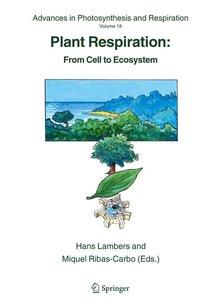 Plant Respiration