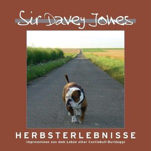 Sir Davey Jones - Herbsterlebnisse