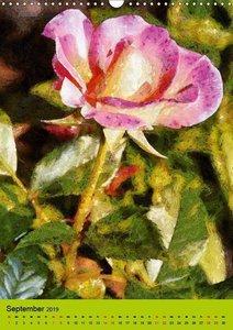 Malerische Rosen (Wandkalender 2019 DIN A3 hoch)