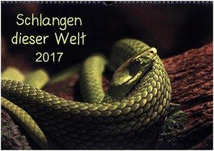 Schlangen dieser Welt (AT-Version)