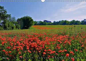 Toskana - Magie der Farben (Wandkalender 2019 DIN A3 quer)
