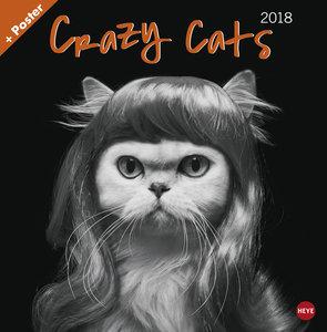 Crazy Cats Broschurkalender 2018