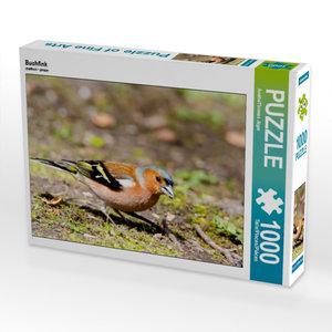 Buchfink 1000 Teile Puzzle quer