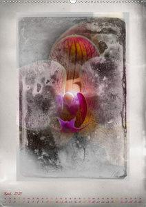 Shabby - Orchidee, Interpretation auf alten Fotoplatten