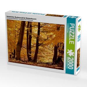 Herbstlicher Buchenwald bei Niedernhausen 2000 Teile Puzzle quer