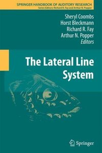 The Lateral Line System