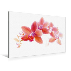 Premium Textil-Leinwand 90 cm x 60 cm quer Phalaenopsis Orchidee