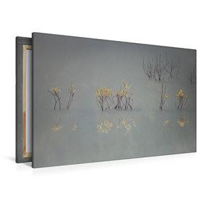 Premium Textil-Leinwand 120 cm x 80 cm quer Von güldenen Blätter