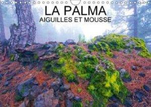 LA PALMA AIGUILLES ET MOUSSES (Calendrier mural 2015 DIN A4 hori