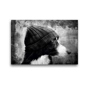 Premium Textil-Leinwand 45 cm x 30 cm quer Bild auf Leinwand Bor