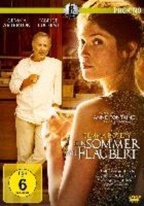 Ein Sommer mit Flaubert