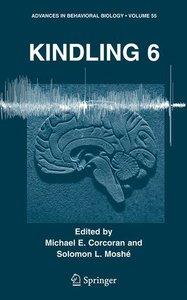 Kindling 6