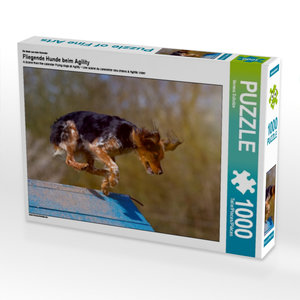 Ein Motiv aus dem Kalender Fliegende Hunde beim Agility 1000 Tei