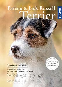 Parson und Jack Russel Terrier