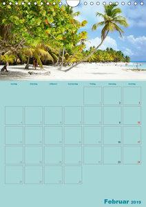 Karibik - Sonne, Strand und Palmen (Wandkalender 2019 DIN A4 hoc