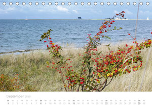 Zauberhafte Schlei (Tischkalender 2019 DIN A5 quer)
