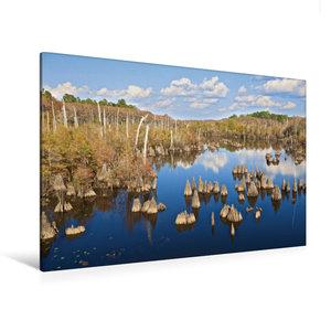 Premium Textil-Leinwand 120 cm x 80 cm quer Dead Lakes
