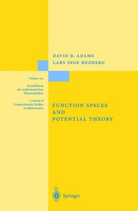 Function Spaces and Potential Theory