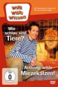Willi wills wissen. Wie schlau sind Tiere? / Achtung: Wilde Miez