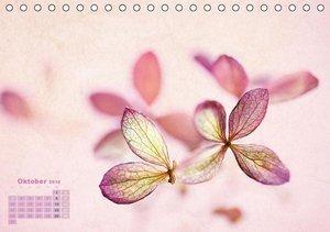 Zauberhafte Blüten (Tischkalender 2016 DIN A5 quer)