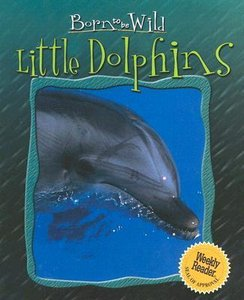 Little Dolphins